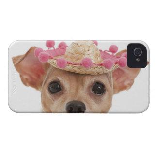 Portrait of small dog in sombrero iPhone 4 Case-Mate case
