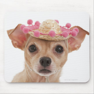 Portrait of small dog in sombrero mouse pad