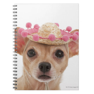 Portrait of small dog in sombrero spiral notebook