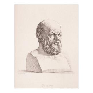 Portrait of Socrates Postcard