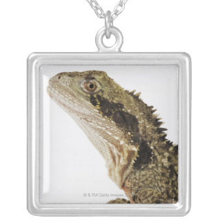 Portrait of this arboreal agamid species native silver plated necklace