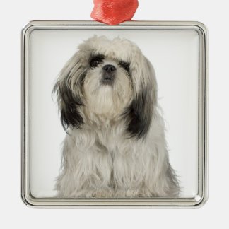 Portrait of Tibetan Terrier puppy Christmas Ornament