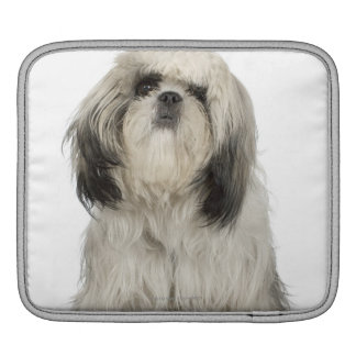Portrait of Tibetan Terrier puppy iPad Sleeve