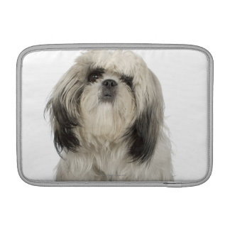Portrait of Tibetan Terrier puppy MacBook Sleeve