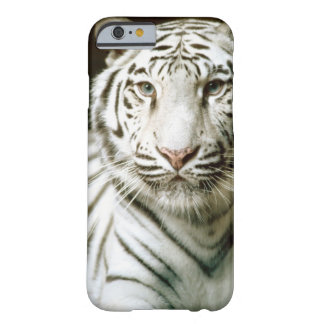 Portrait of tiger barely there iPhone 6 case