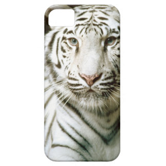 Portrait of tiger iPhone 5 covers