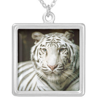 Portrait of tiger silver plated necklace