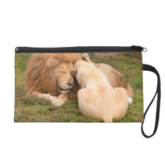 Portrait of Timbavati White lion male and female Wristlet Purses