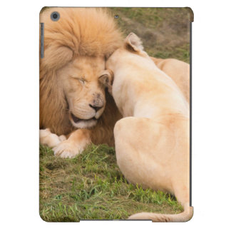 Portrait of Timbavati White lion male and female Case For iPad Air