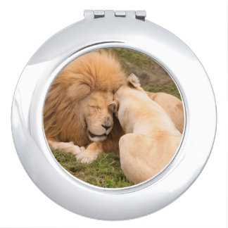 Portrait of Timbavati White lion male and female Compact Mirrors