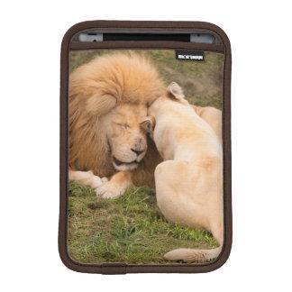 Portrait of Timbavati White lion male and female iPad Mini Sleeve