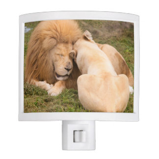 Portrait of Timbavati White lion male and female Night Light