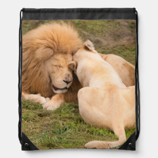 Portrait of Timbavati White lion male and female Drawstring Backpacks