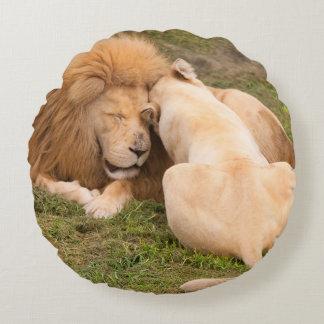 Portrait of Timbavati White lion male and female Round Cushion