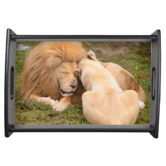 Portrait of Timbavati White lion male and female Service Trays