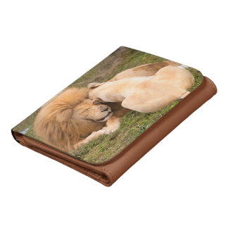 Portrait of Timbavati White lion male and female Wallets