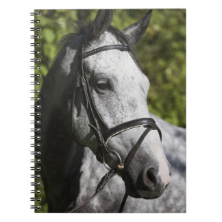 portrait of white horse 2 spiral notebook