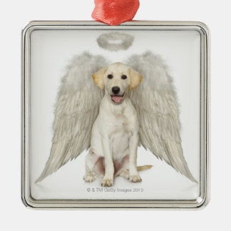 Portrait of white Labrador retriever wearing Christmas Ornament