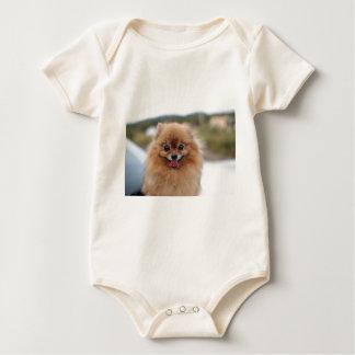 Portrait Pomeranian Dog Baby Bodysuit