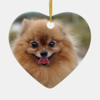 Portrait Pomeranian Dog Ceramic Heart Decoration