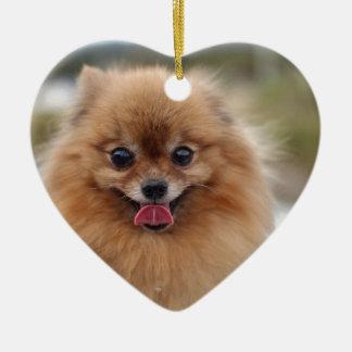 Portrait Pomeranian Dog Christmas Ornament