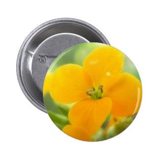 Portrait - Siberian Wallflower Pins