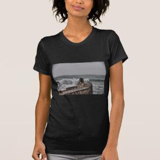 portreath T-Shirt