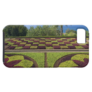 Portugal, Madeira Island, Funchal. Botanical Case For The iPhone 5
