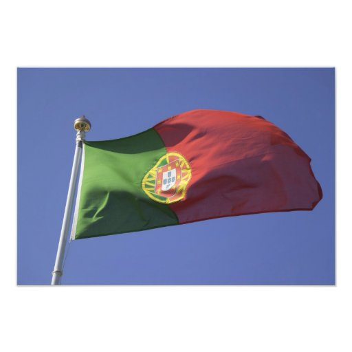 Portuguese Flag RF) Photo Print