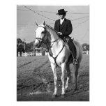 Portuguese horse rider photo
