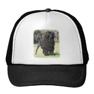 Portuguese Water Dog 9Y510D-338 Mesh Hats