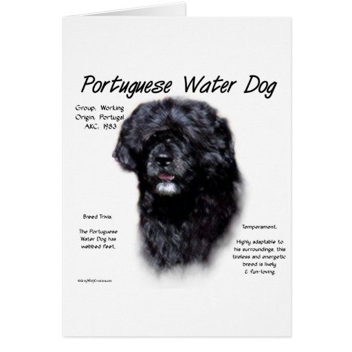 Portuguese Water Dog History Design Greeting Card