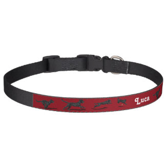 Portuguese Water Dog Holiday Collar