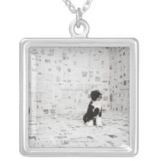 Portuguese Water Dog in room covered in Silver Plated Necklace