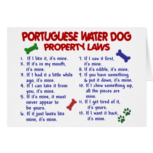 PORTUGUESE WATER DOG Property Laws 2 Cards