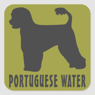 Portuguese Water Dog Square Sticker
