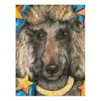 Posh Poodle Postcard