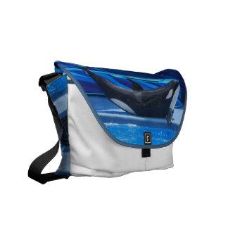 Posing Orca Messenger Bag