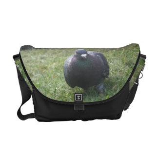 Posing Pigeon Messenger Bag