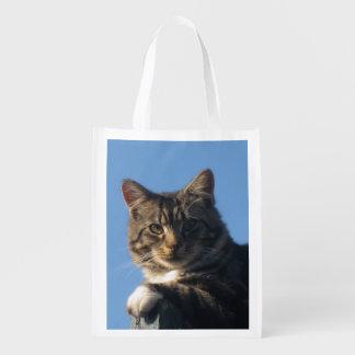 Posing Tabby Kitten Fabric Reusable Bag