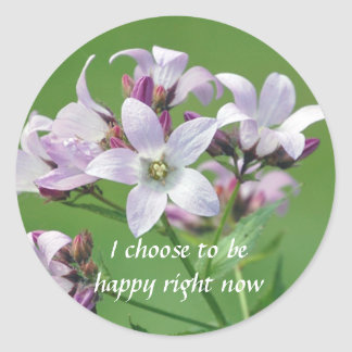 Positive Affirmation motivation about hapiness Round Sticker