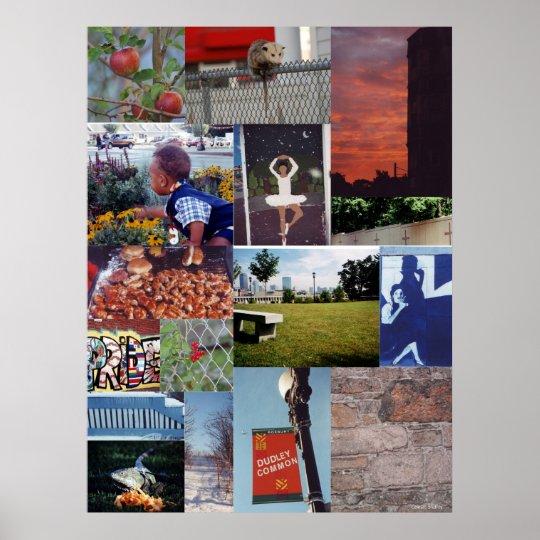 Positively Roxbury Poster Print (1)
