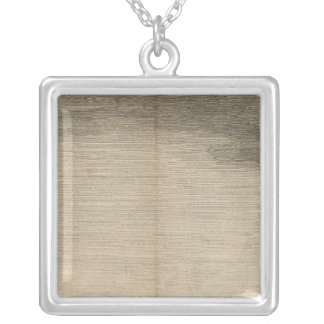 Possession Bay, South Georgia Silver Plated Necklace
