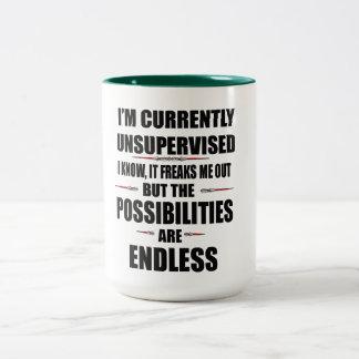 possibilities are endless funny mug design