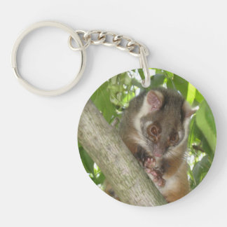 Possum In A Tree Key Ring