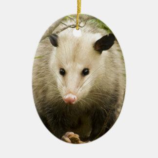 Possums are Pretty - Opossum Didelphimorphia Ceramic Oval Decoration