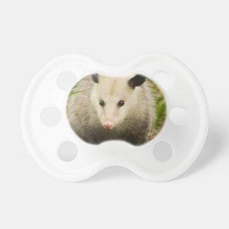 Possums are Pretty - Opossum Didelphimorphia Dummy
