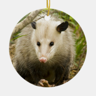 Possums are Pretty - Opossum Didelphimorphia Round Ceramic Decoration