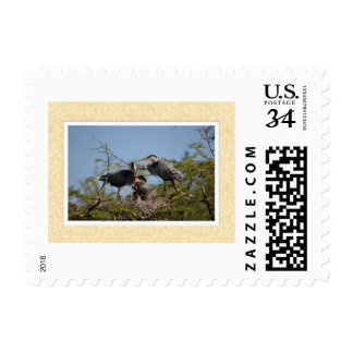 Post-stamp with an image of Blue Heron Nest. Postage Stamps
