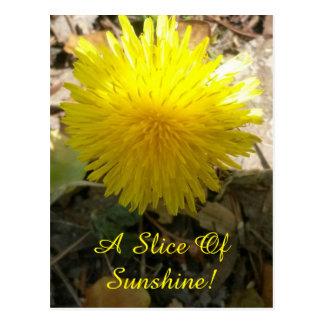 "Postcard (""A Slice Of Sunshine"")"